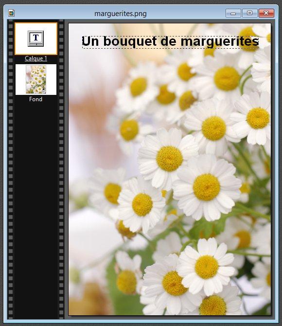 Photofiltre - Ajouter du texte sur une image 2