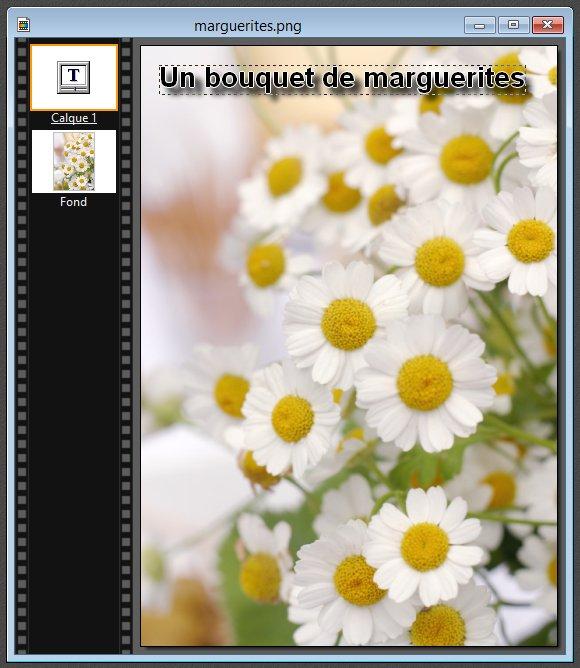 Photofiltre - Ajouter du texte sur une image 4