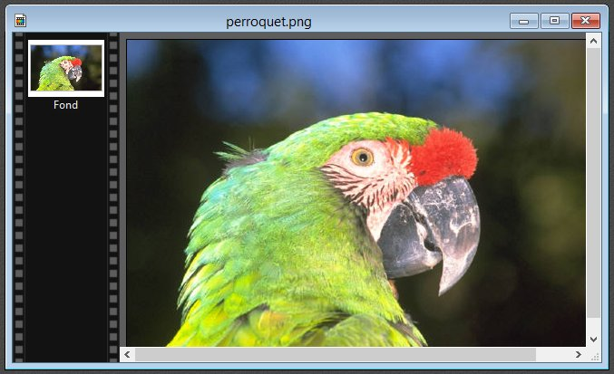 Photofiltre - Créer une forme 1